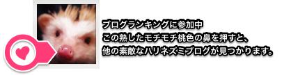 2016-02-13_22_38_48_instant6